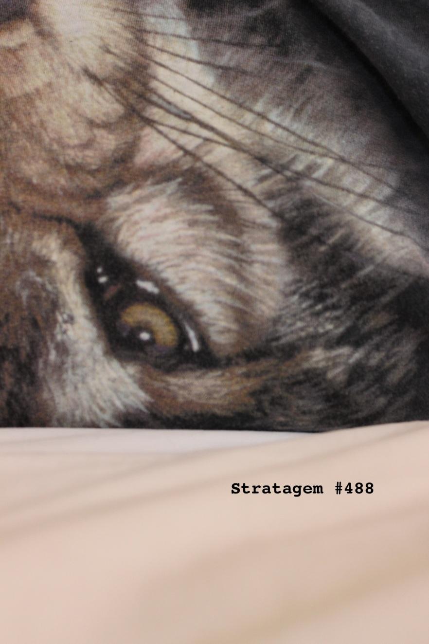 Stratagem 488